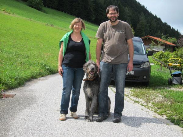 Irish Wolfhound im Bergurlaub