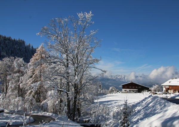 Wintermärchen bayerisch untersberg  im Schnee